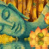 troquer avec Boddhiju, sur mytroc