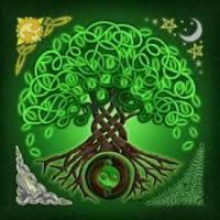troqueur jade siam , sur mytroc