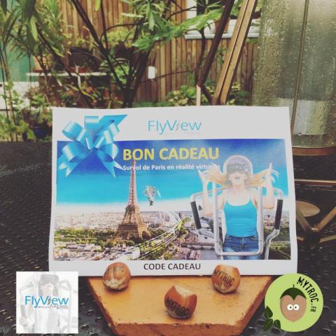 Survol de Paris en Réalité Virtuelle - Flyview