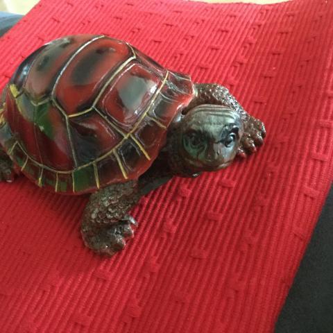 troc de  tortue, sur mytroc