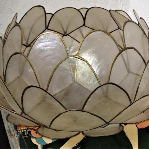troc de  Abat jour lotus réservé, sur mytroc