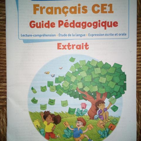 troc de  Guide pédagogique français CE1, sur mytroc