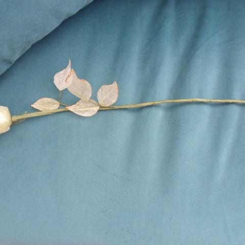troc de  Rose blanche artificielle pour déco, sur mytroc