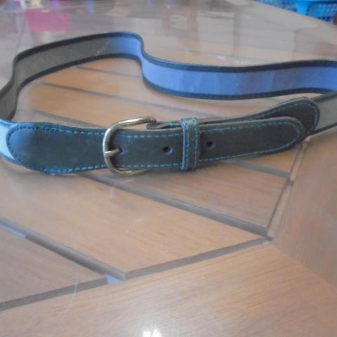 troc de  ceinture grise longueur  90 cm largeur 2,5 cm  3  noisettes, sur mytroc