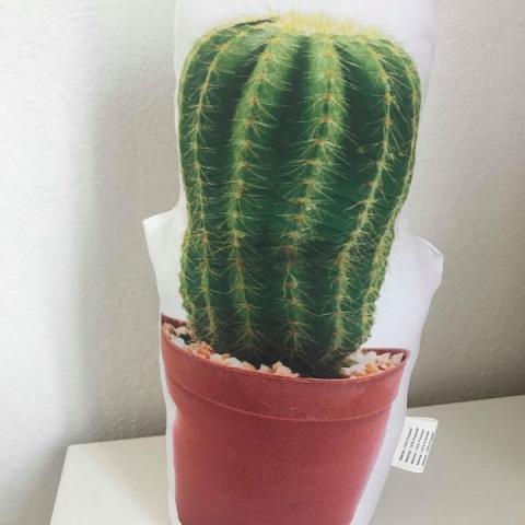 troc de  cale porte forme cactus, sur mytroc