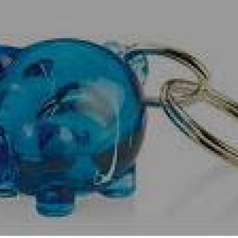 """troc de  Attribué Porte-Clé Cochon bleu marine plastique transparent """"bullé"""", sur mytroc"""