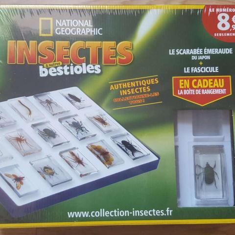 """troc de  réservé - 1iere boite de la collection """"insectes & autres bestioles"""", sur mytroc"""