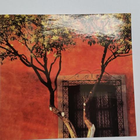 troc de  Mur orange, sur mytroc