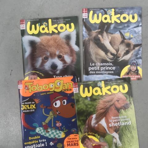 Lot de 4 magazines pour enfants