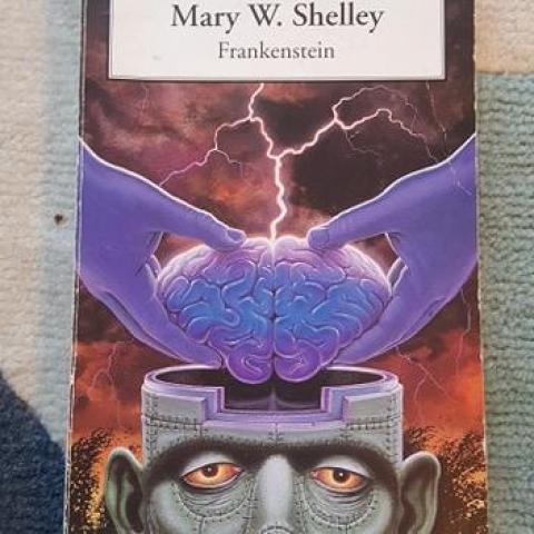 troc de  Frankenstein - Mary Shelley, sur mytroc