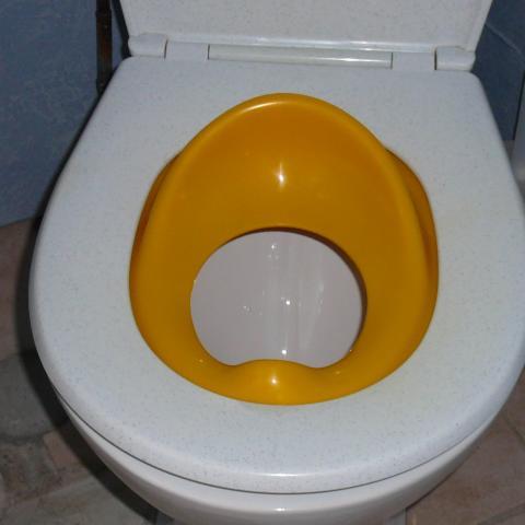troc de  Réducteur WC enfant, sur mytroc