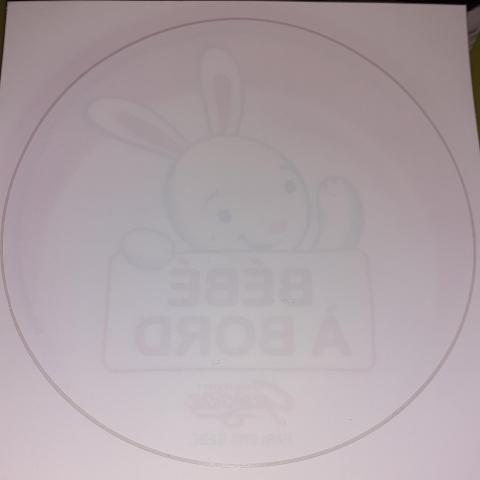 troc de  2 stickers bébé à bord, sur mytroc