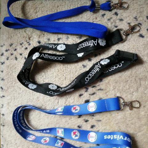 troc de  RESERVE - Tour de cou porte badge porte clefs, sur mytroc