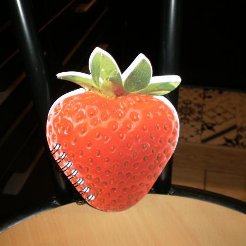 troc de  réservé,calepin neuf forme fraise 14X10, sur mytroc