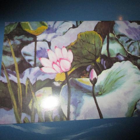troc de  carte double neuve nénuphar, sur mytroc