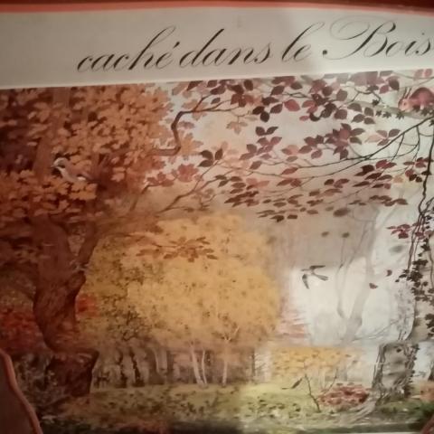 troc de  Mise à jour le 27/08/21 - grand affiche vintage, sur mytroc