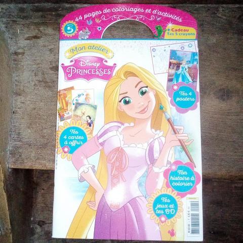"""troc de  """"Réservé"""" Mon atelier Disney Princesses, sur mytroc"""
