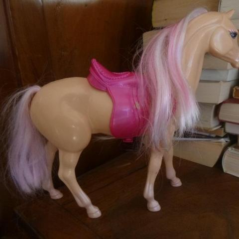 troc de  cheval, sur mytroc