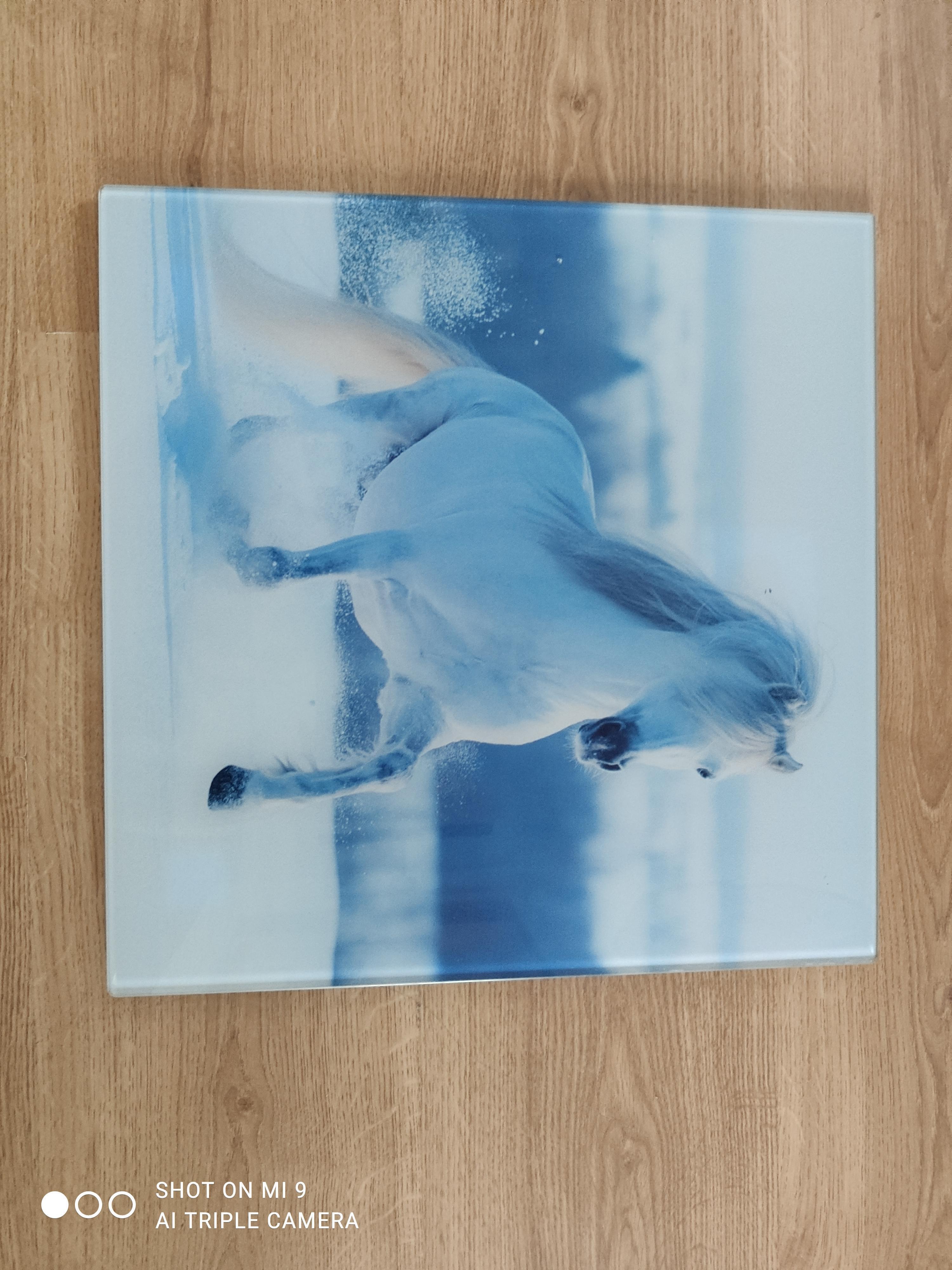 """troc de troc cadre décoratif """"cheval"""" image 1"""
