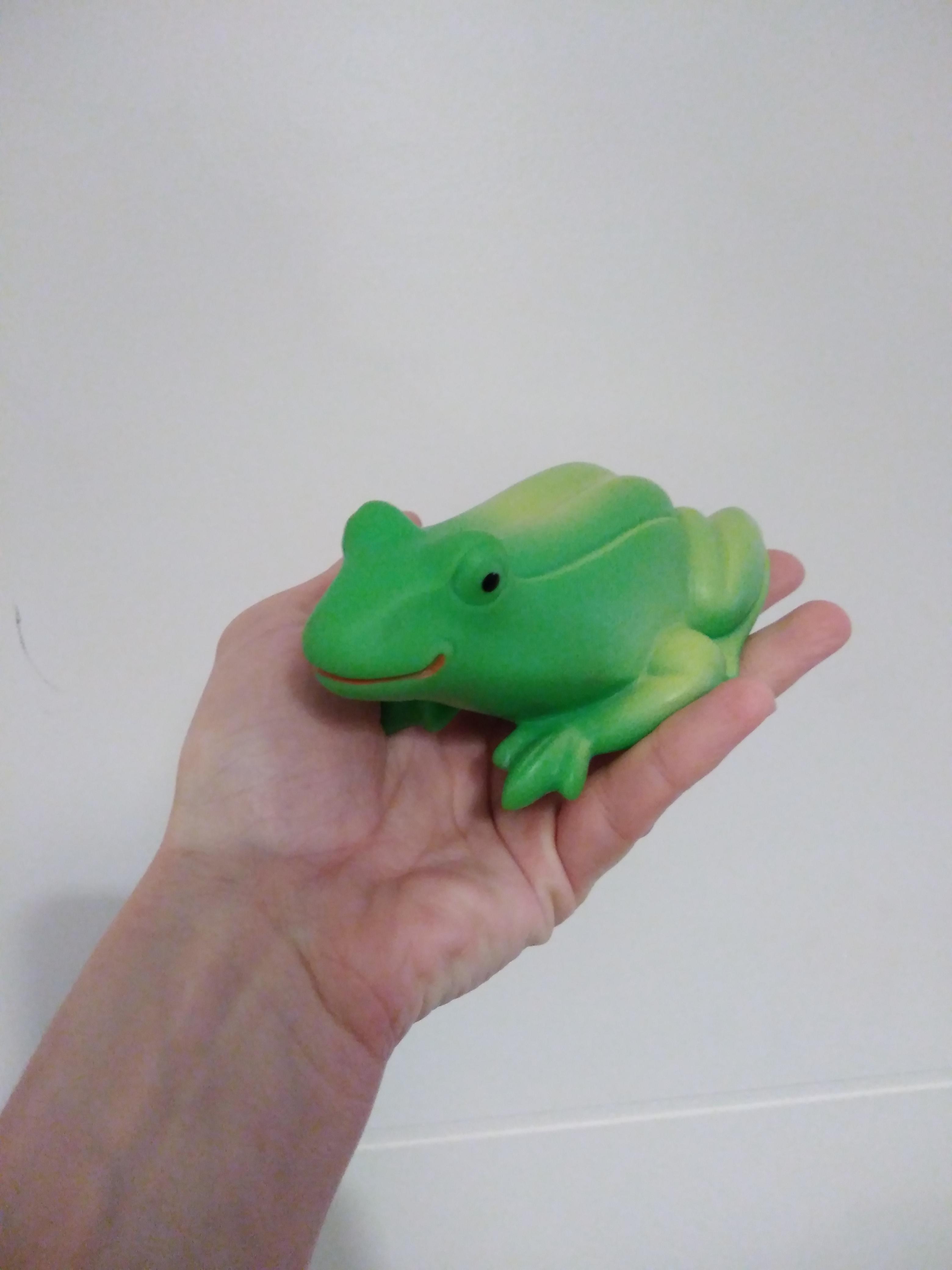 troc de troc résa troqueuse / petite grenouille image 0