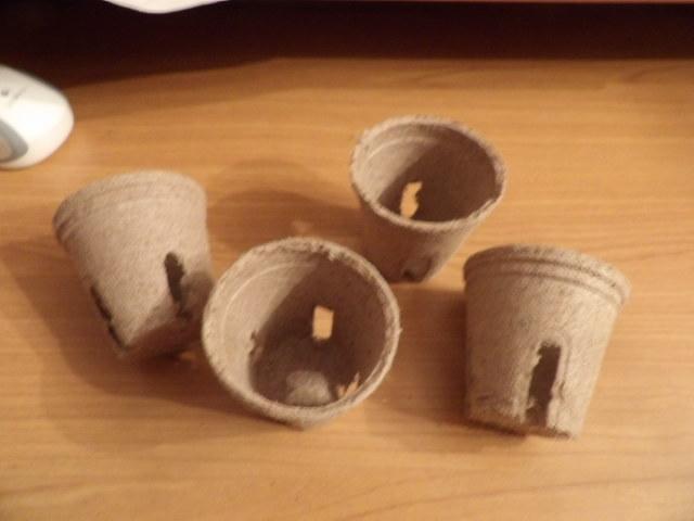troc de troc 4 petits pots de fleurs image 0