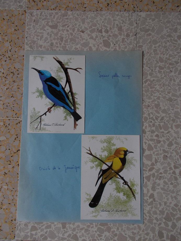 troc de troc reproductions et cartes postales image 2