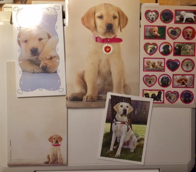 troc de troc réservé lot pour les amoureux des chiens labrador :-) image 0