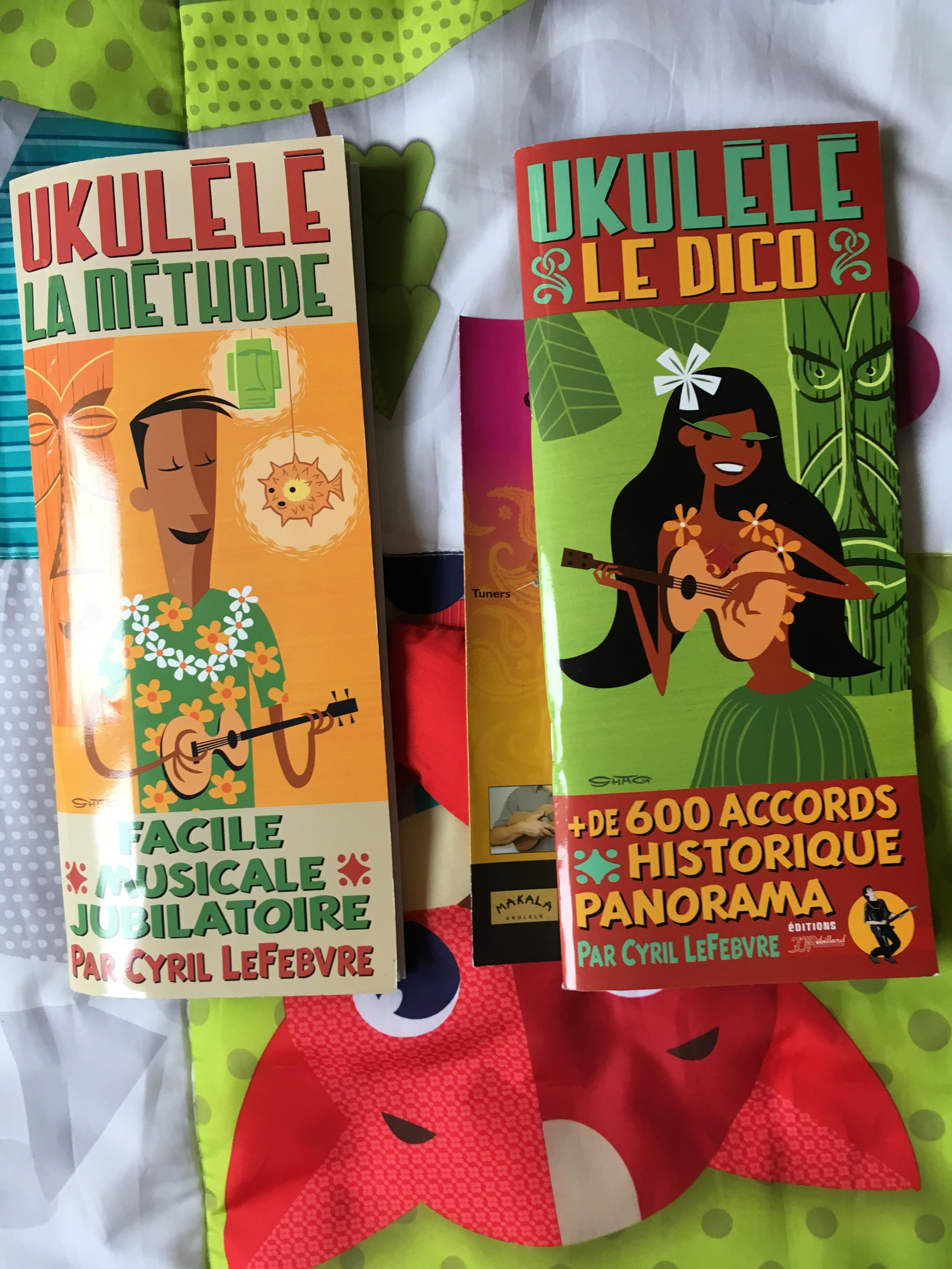 troc de troc prêt pour un ukulele image 2