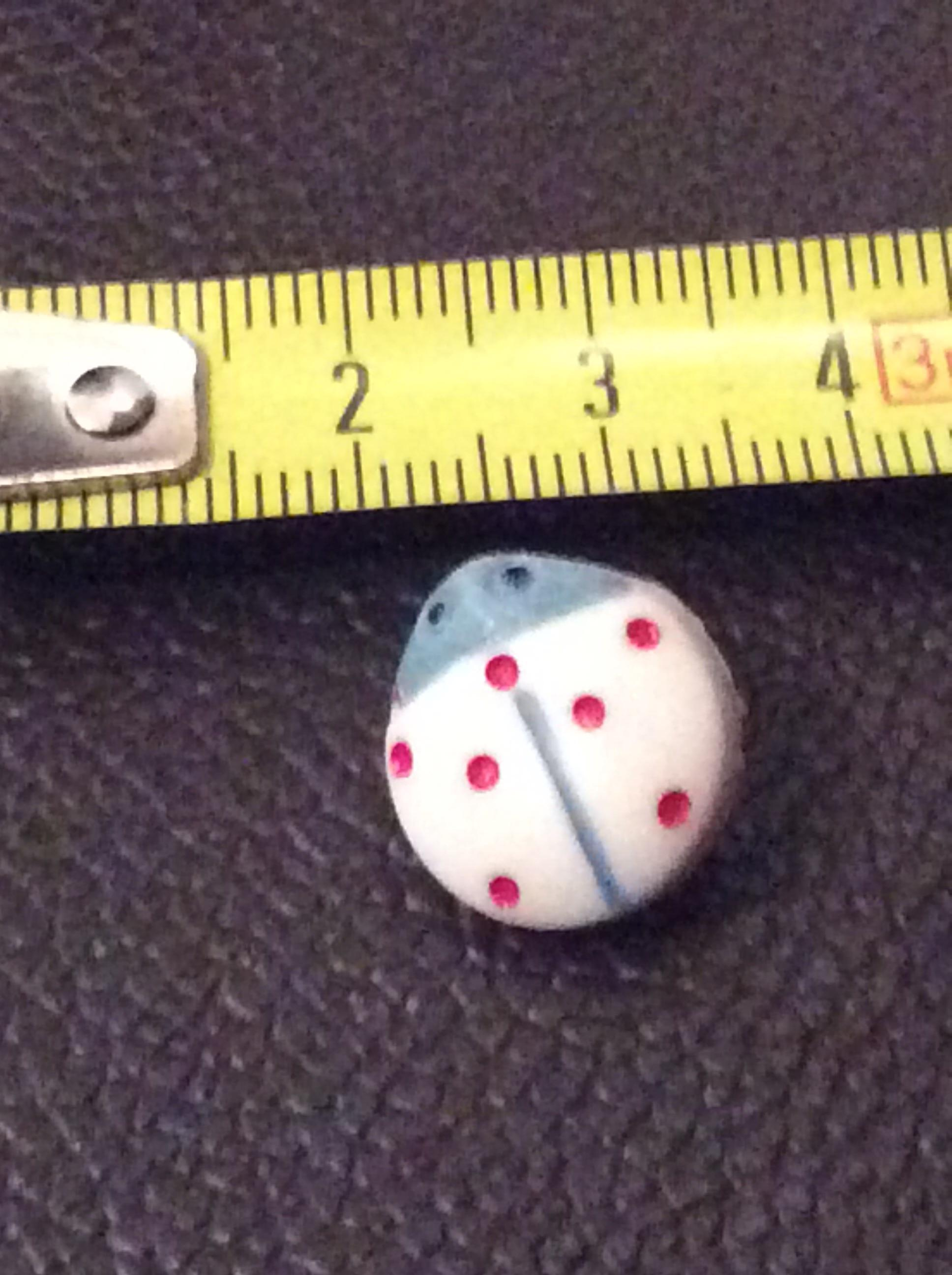 troc de troc réserve dauvpic bouton 1,5 cm vintage  blanc coccinelle image 0