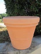 troc de troc l'asso mytroc recherche des graines/pots/plantes pour un ehpad image 2