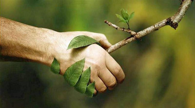 troc de troc bilan naturo et programme santé image 0