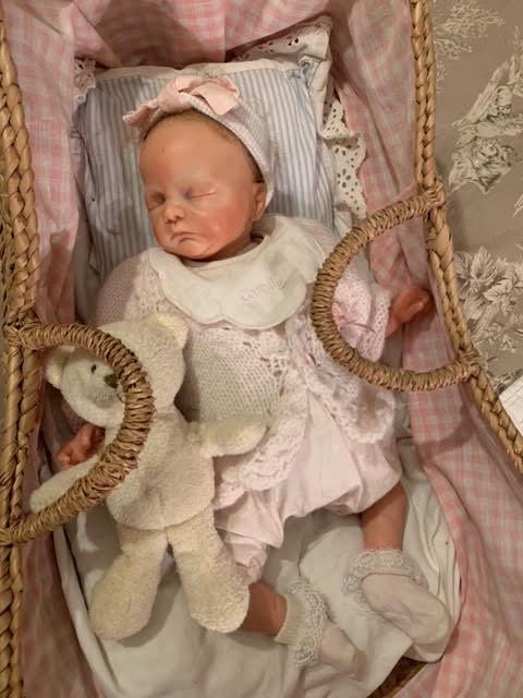 troc de troc 2 poupées/bébé reborn véritables - image 1