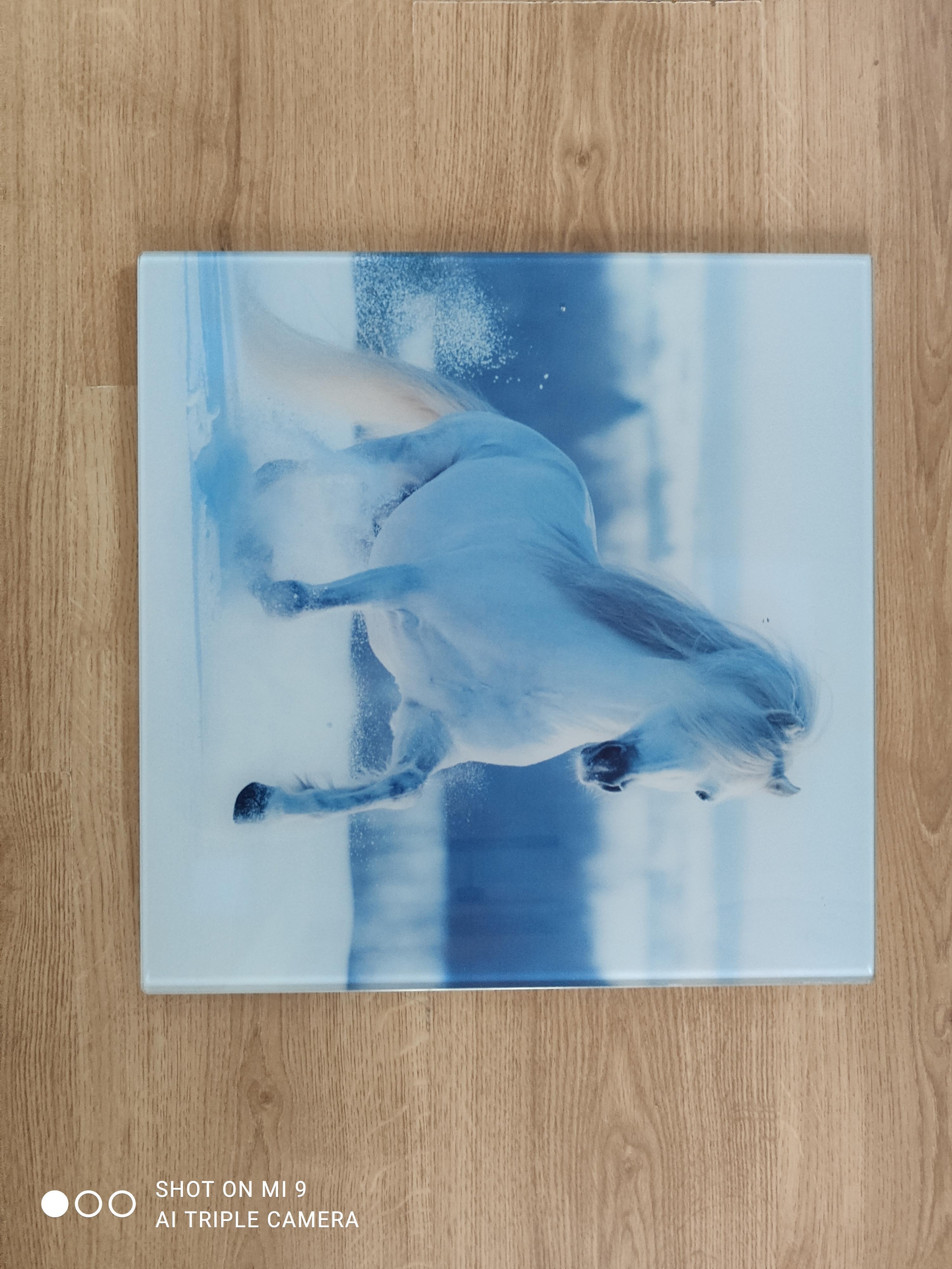 """troc de troc cadre décoratif """"cheval"""" image 2"""