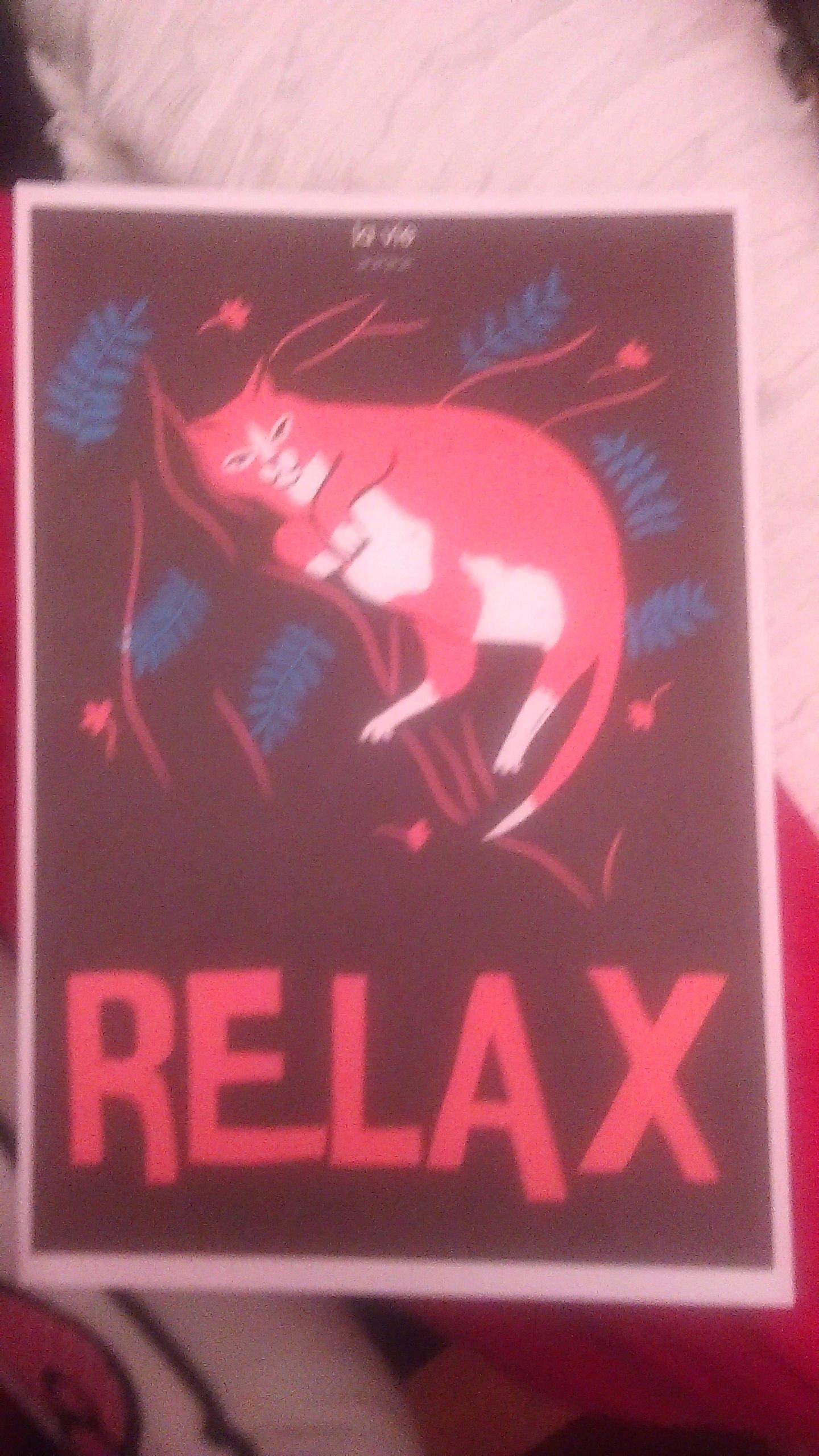"""troc de troc affiche """"relax"""". image 0"""