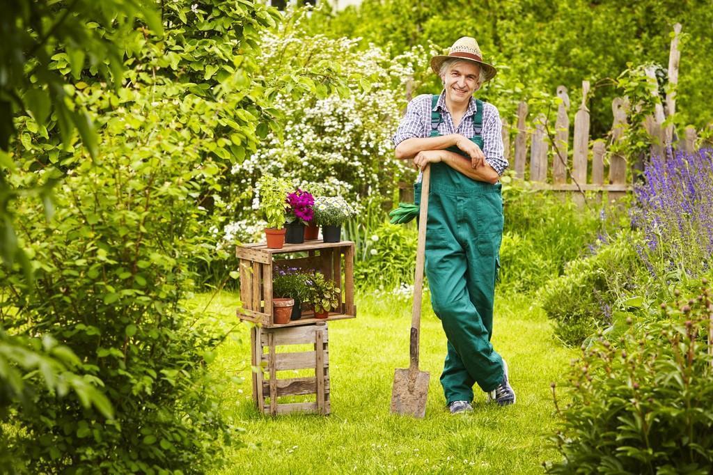 troc de troc soutien scolaire contre jardinage! image 1