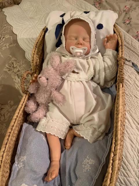 troc de troc 2 poupées/bébé reborn véritables - image 0